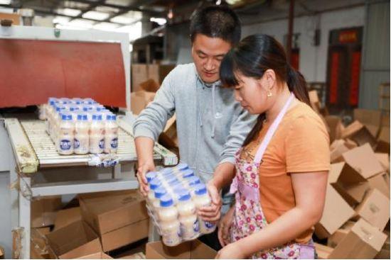 合肥90后办乳酸菌饮料厂 在苏宁拼购日销超三万单
