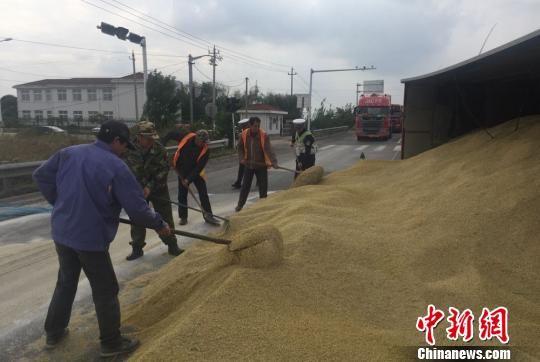 盐城一运粮车侧翻10余吨稻谷倾洒路面 群众自
