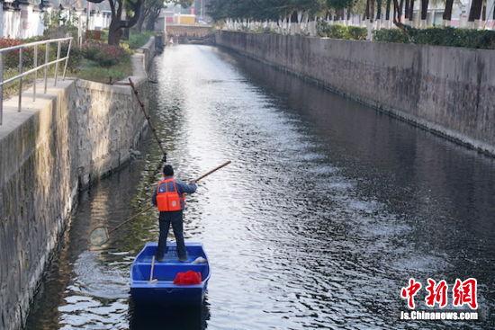 图为整治后的北庄河清澈见底,波光粼粼。