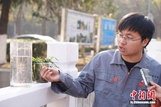 工作人员在介绍生态修复的详细内容。