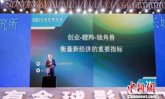 南京首次发布《南京独角兽、瞪羚企业发展白皮书》。 潘雷 摄