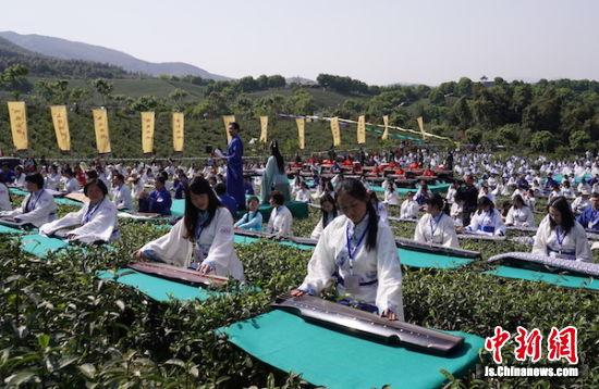 四百余名演奏者齐聚宜兴茶园。