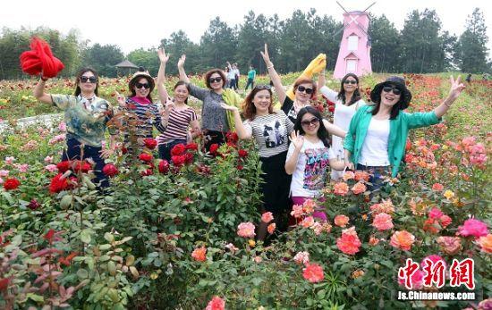 众多游客在玫瑰园赏花拍照。