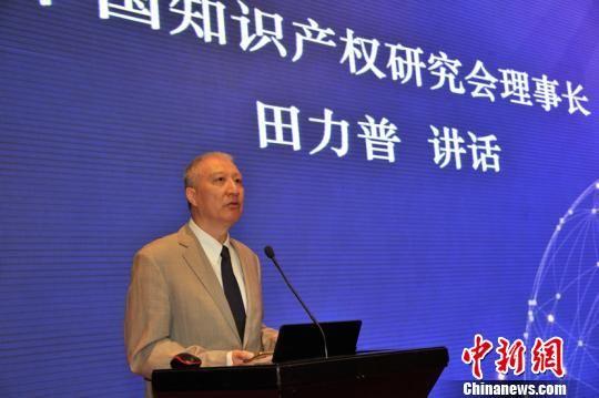 中国知识产权研究会理事长田力普讲话 刘妍妍 摄