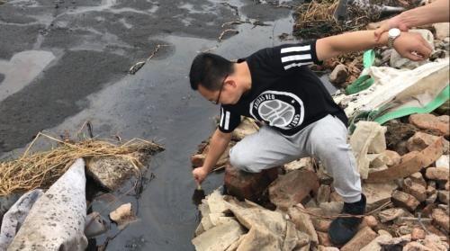 督察人员对污泥池积水检测显示,pH值达到11左右。图片来源:生态环境部网站。