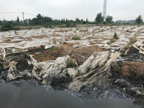 污泥堆存现场触目惊心。图片来源:生态环境部网站。