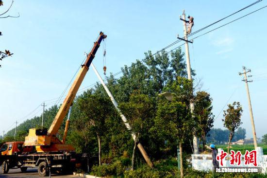 盐城供电公司盐都营业部兴达农服公司员在拆除需要移位的电杆。