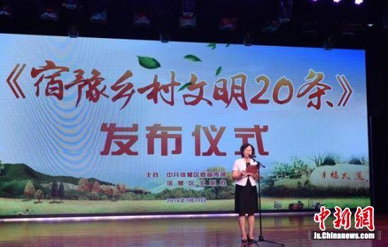 宿豫区委常委、宣传部长徐海涛在发布会上致辞