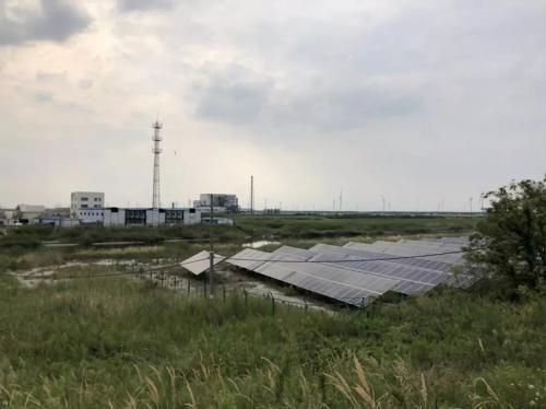 皇冠娱乐注册送66海安沿海防护林和滩涂县级自然保护区内已建成的光伏发电场