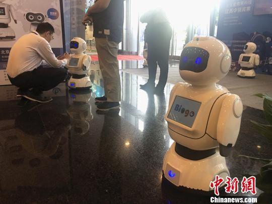 """在""""2018(第六届)皇冠娱乐注册送66互联网大会""""召开期间,多款智能机器人亮相。 杨颜慈 摄"""
