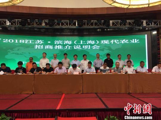 滨海赴上海举行现代农业招商推介说明会。 滨海县委宣传部供图