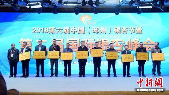 全国十大中国最美银杏文化小镇颁奖现场。