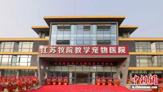 图为新建成的江苏牧院教学宠物医院