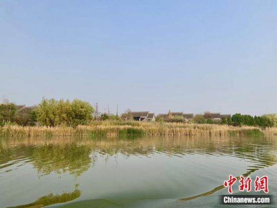江苏徐州贾汪区潘安湖。中新网 张奥林 摄