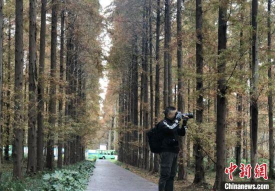 全球华人摄影师走进东台 聚焦黄海湿地世遗风光