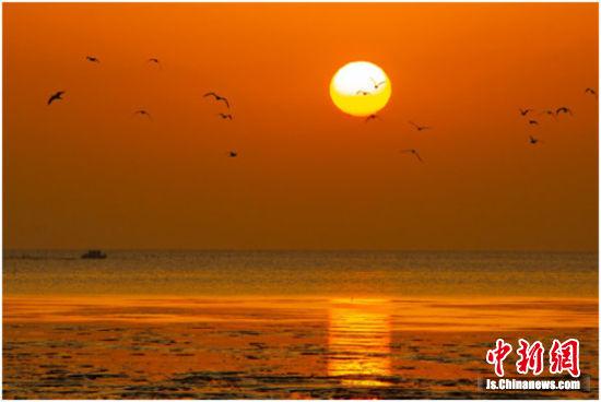 江苏东台沿海湿地风光