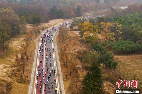 车手们骑行在风景秀美的南京老山。 泱波 摄