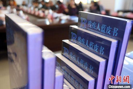 《残疾人蓝皮书:中国残疾人事业发展报告(2019)》发布会还举行了残障与发展研讨会。 泱波 摄