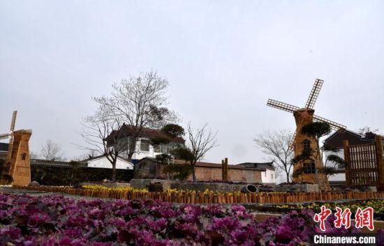 原来的一处臭水塘如今变成一个大花园,村里还准备在旁边建设一个村民大食堂。 朱志庚 摄
