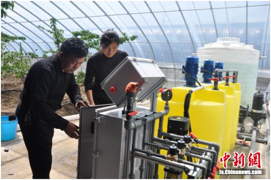 农业公司以水肥一体机灌溉瓜果。 李集镇政府供图