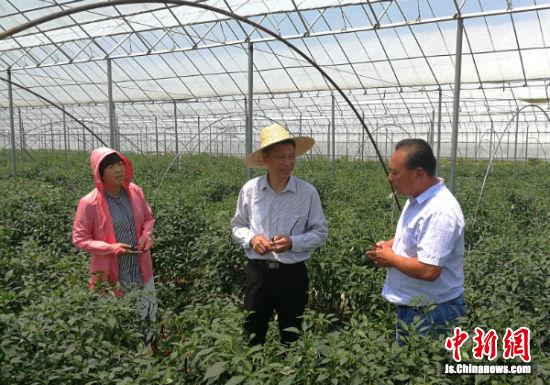 专家为上海市外蔬菜主供应基地提供技术指导