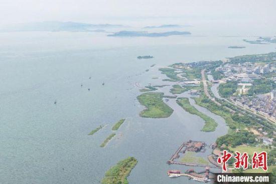 入汛以来,江苏多地水位上涨。图为7月25日航拍苏州太湖湖滨国家湿地公园。 泱波 摄