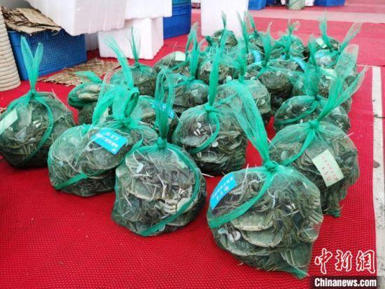 一篓篓的大闸蟹正准备打包装箱,发往全国各地。 钟升 摄