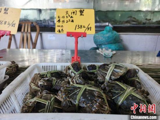 捆扎好的大闸蟹,等待着消费者的购买。 钟升 摄