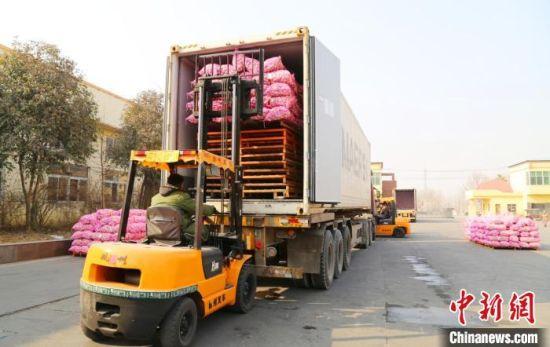 江苏全境高效的公路物流,让农产品可以保质保鲜送进城里的超市菜场。(资料图)交通部门供图