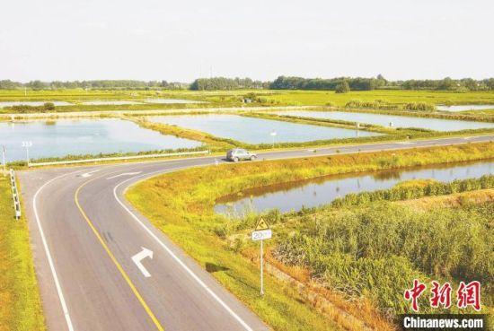 公路物流直达鱼塘水田,让水产养殖户们放心放手大干。(资料图)交通部门供图