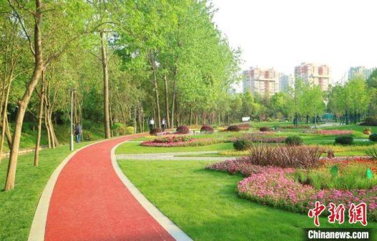 经过修整后的亲民步道。 南京鼓楼区建设局供图