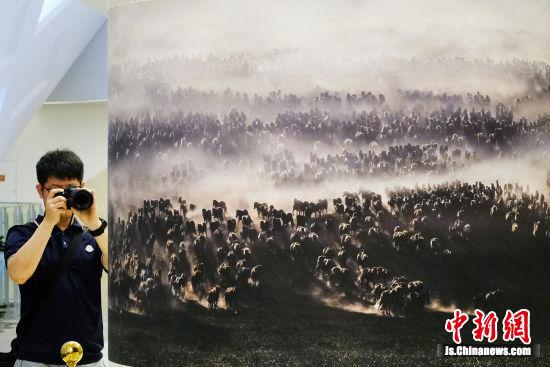 巨幅作品《万马奔腾》中,马的鬃毛清晰可见。中新社记者 泱波 摄